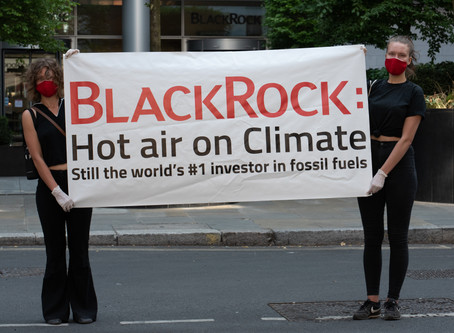 BlackRock: Failing to Keep its Own Promises on Climate (Backgrounder)