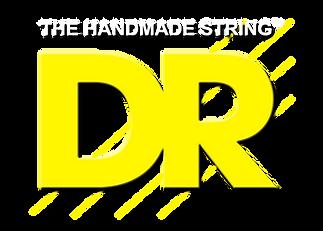 DR-Logo-1.png