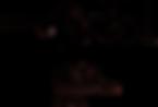 Logo_First_black.png