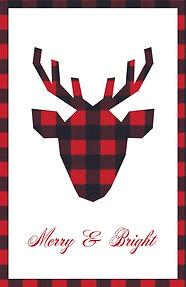 Reindeer - Front.jpg