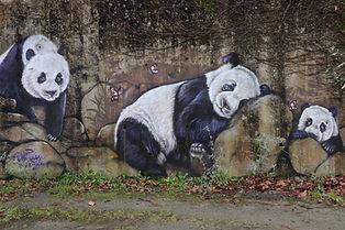 Pandas Port Boyer.JPG