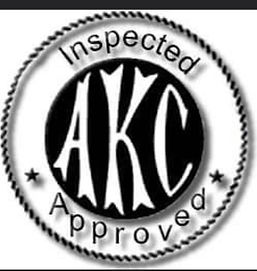 akc approved.jpg