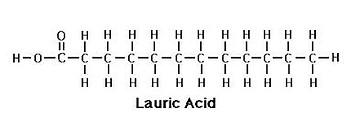 olio di cocco L'olio di cocco e le sue proprietà 1f4837 fdbd836d2cac46308223964ca44d3441 mv2