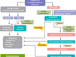 Rethinking mechanisms, diagnosis and management of endometriosis