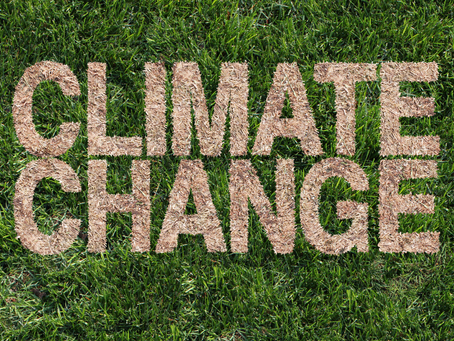 Will Climate Change Impact Real Estate Values?