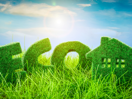 What Makes a Home Green?
