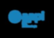 300ppi_logo AAPI.png