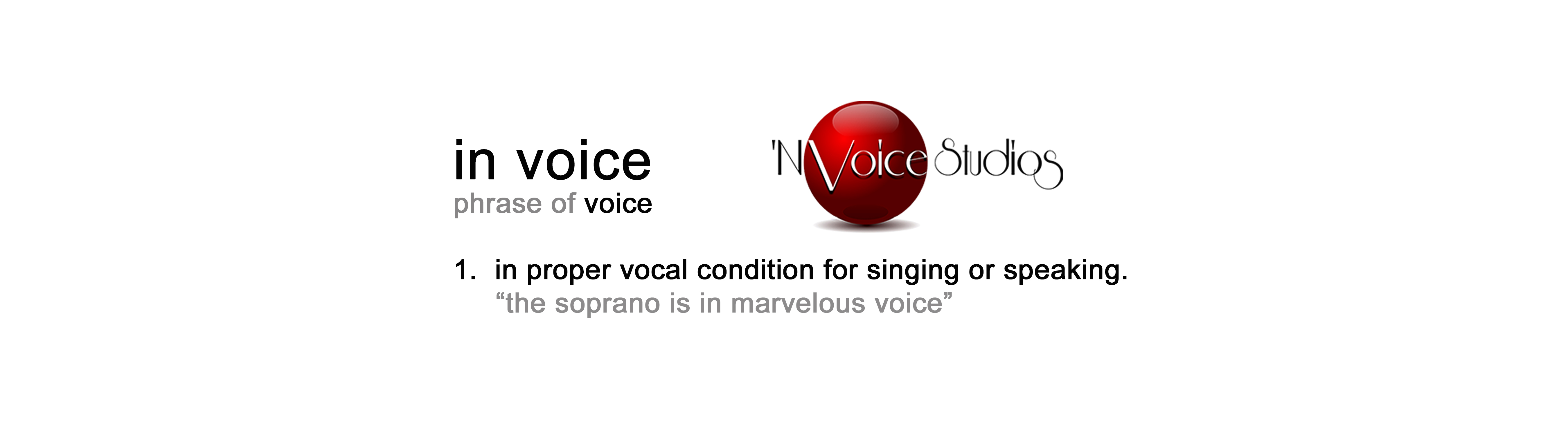 in voice definition banner