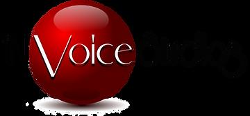 'NVoice Studios