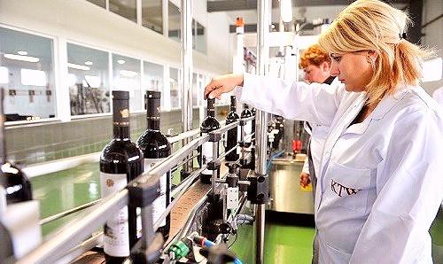 Kakhetian Traditional Winemaking - KTW Factory