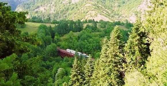 The Kukushka Train