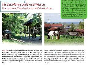 Kinder, Pferde, Wald und Wiesen