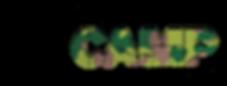 Logo-LASERCAMP-sansbord.png