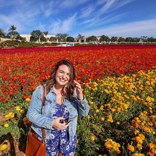 the flower fields were everything that I