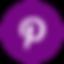 purplepintresticon.png