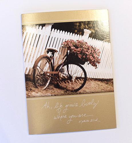 Daydreams Cards