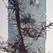 60 x 80 cm, Lithografie , Mokulito