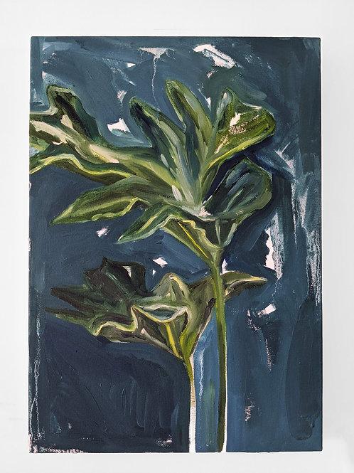 Leaf Sketch (2020)