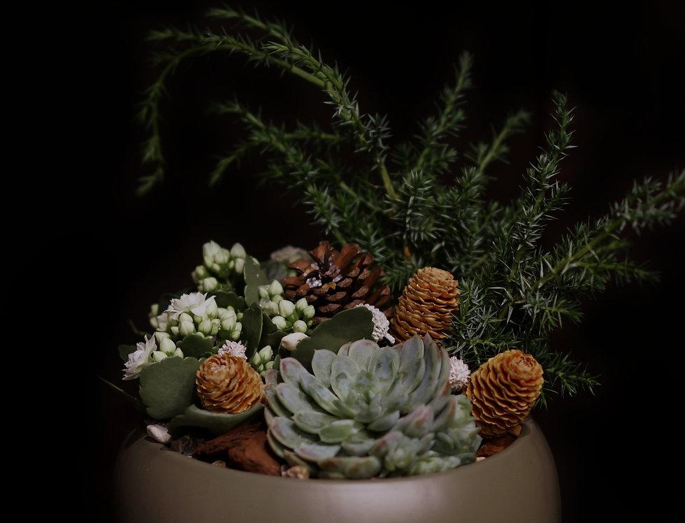 Plantering i naturnära toner