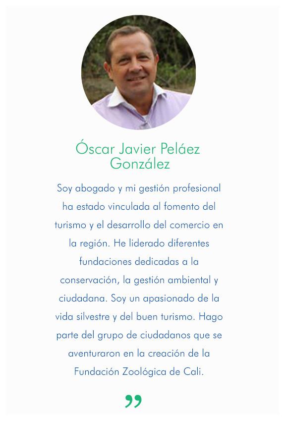 Óscar Javier Peláez González
