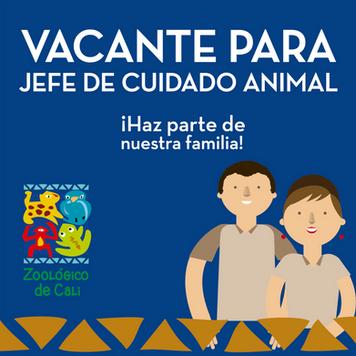VACANTE JEFE DE CUIDADO ANIMAL