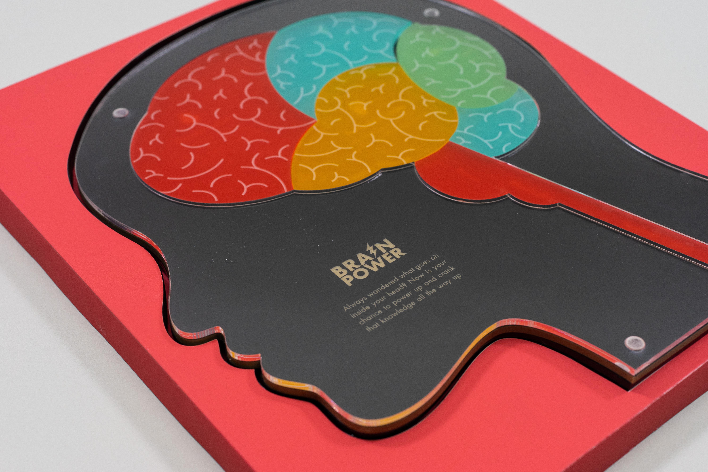 Brain 06