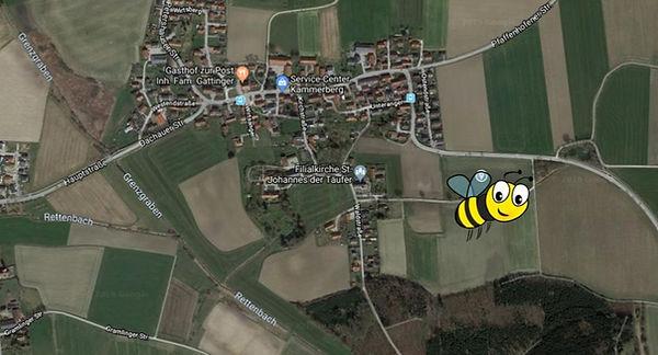 Karte_Blühwiese_bearbeitet.jpg