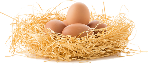 drive-the-eggs-3070850_1920.png