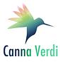 CV Logo 3.png
