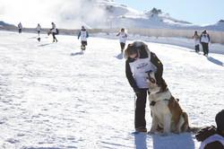 Monteiths Dog Derby 2019