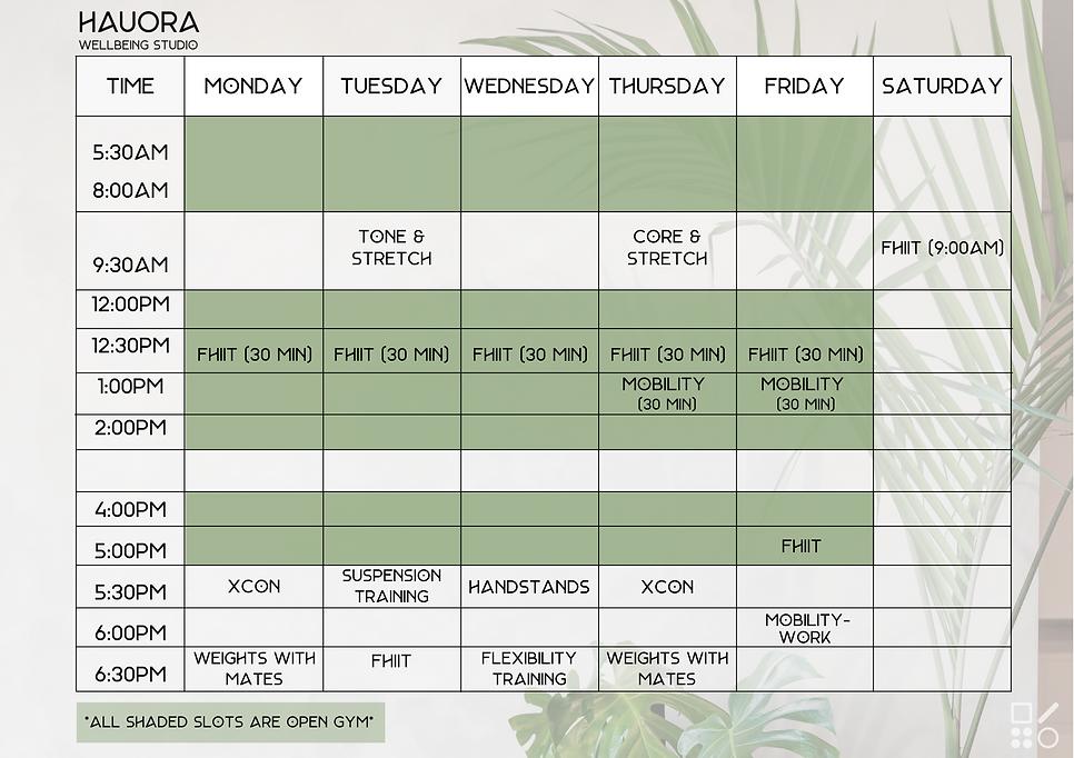 Hauora Class Schedule (5).png