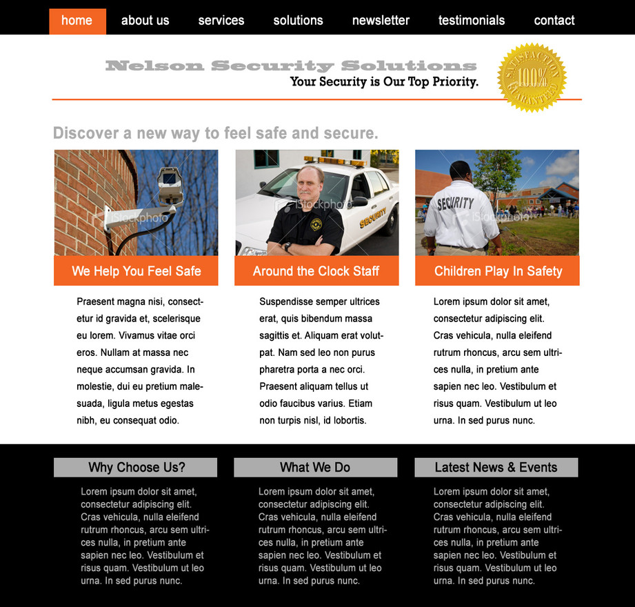Nelson Security Solutions Website