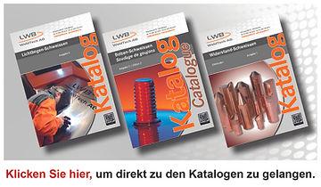 Bild Kataloge für Homepage 1 Seite.jpg
