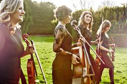 Enigma String Quartet