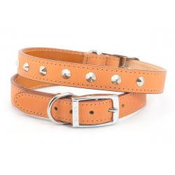 Ancol Leather Collar Studded Tan, 39-48CM SIZE 5
