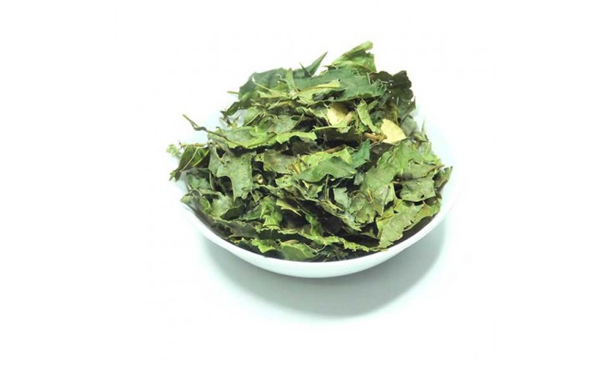 Espinheira santa chá - 50g