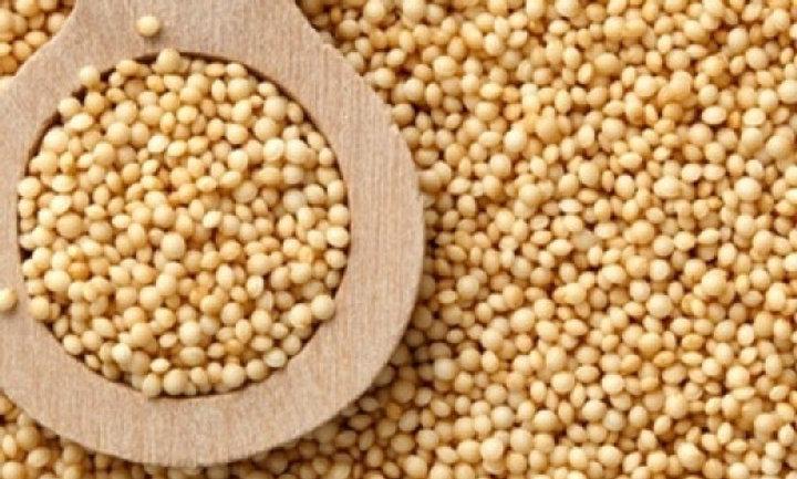 Amaranto em grãos - 100g