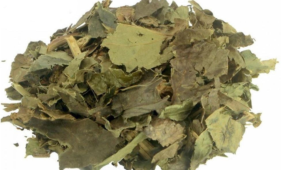 Folhas de Guaco chá - 50g