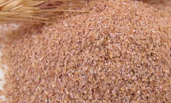 Farelo de trigo - 100g