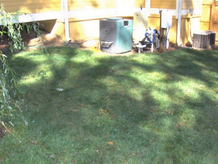 After+cleanup+and+sod+install