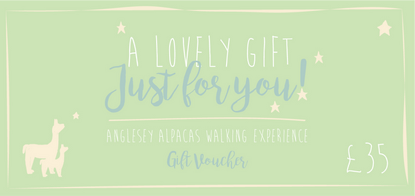 Gift voucher £25-03.png