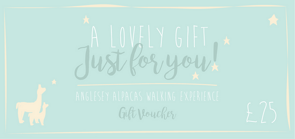 Gift voucher £25-01.png