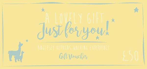 Gift voucher £25-05.png