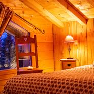 location chalet, vosges, ventron, groupe, nature, louer chalet calme, pistes de ski, randonnées, animaux