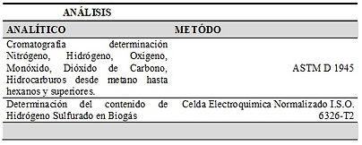 cromatografía.jpg