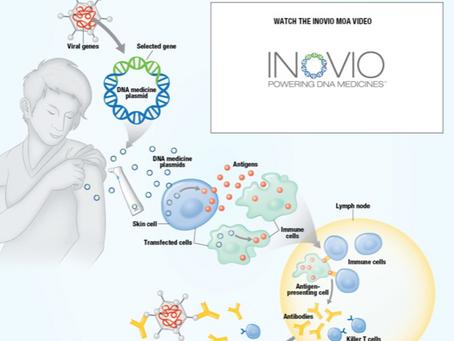 Neden Pfizer'in Covid-19 Aşısı Çözüm Değil ve Ben Hangi Aşıyı Bekliyorum?
