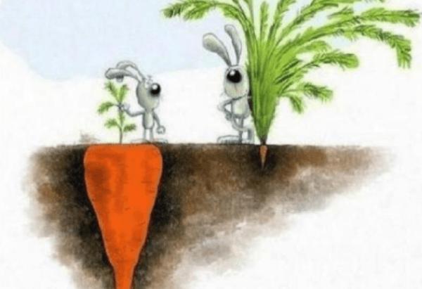 Başarının Tanımı Size Özel Olmalı