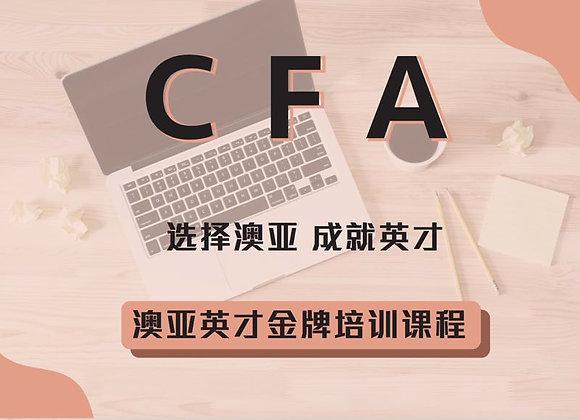 【CFA一级全面课程班】全面课程班 13周 110小时