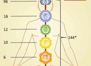 The Chakra System