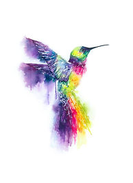 colour alchemy logo bird